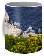 Racing Pigeons Coffee Mug