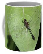 Racket-tailed Emerald Dragonfly Coffee Mug