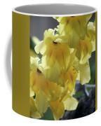 Radiance Coffee Mug
