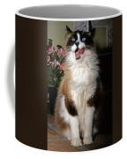 Ragdoll Cat Licks His Lips Coffee Mug