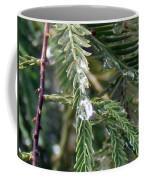 Rain Drop On Fir Tree Coffee Mug