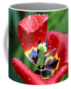 Rain Kissed Coffee Mug