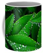 Rain Patterns Coffee Mug