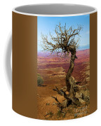 Rainbow Canyon Coffee Mug