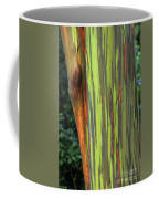 Rainbow Gum Tree Hawaii Coffee Mug