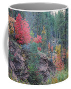 Rainbow Of The Season Coffee Mug by Heather Kirk