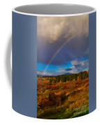 Rainbow Over Rithets Bog Coffee Mug by Louise Heusinkveld