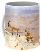 Ramon Crater Negev Israel Coffee Mug