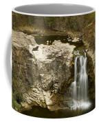 Ramsey Falls Mn 16 Coffee Mug