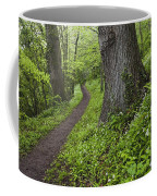 Ramsons By Path In Woods, County Louth Coffee Mug