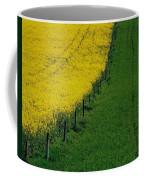 Rapeseed Growing In A Field, Ireland Coffee Mug
