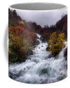 Rapid Waters Coffee Mug