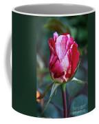 Raspberry Swirl Rose Coffee Mug