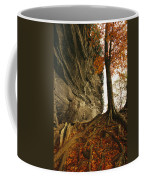 Raven Rock And Autumn Colored Beech Coffee Mug
