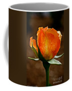 Recent Raindrops Coffee Mug