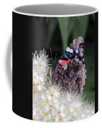 Red Admiral With Folded Wings Coffee Mug