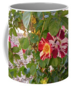 Red And White Roses 3 Coffee Mug