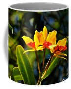 Red And Yellow Orchid Coffee Mug