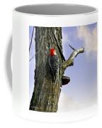 Red-bellied Woodpecker - Male Coffee Mug