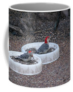 Red Bellied Woodpeckers Male And Female Coffee Mug
