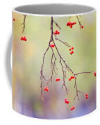 Red Berrries Coffee Mug