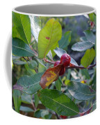 Red Berry  Coffee Mug