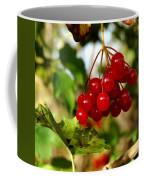 Red Bunch Coffee Mug