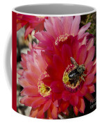 Red Cactus Flower With Bumble Bee Coffee Mug