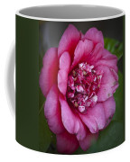 Red Camellia Coffee Mug by Teresa Mucha
