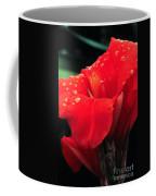 Red Canna With Raindrops Coffee Mug