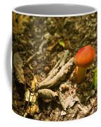 Red Caped Mushroom 1 Coffee Mug