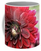 Red Carpet Dahlia Coffee Mug