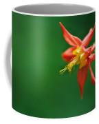 Red Columbine Aquilegia Formosa Coffee Mug
