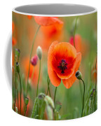 Red Corn Poppy Flowers 07 Coffee Mug by Nailia Schwarz