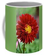 Red Dahlia Unfurled Coffee Mug