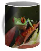 Red-eyed Tree Frog In Costa Rica Coffee Mug