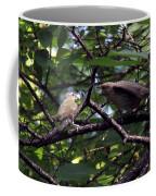 Red-eyed Vireo Feeding Cowbird Fledgling Coffee Mug