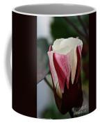 Red Foliated White Coffee Mug