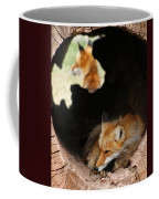 Red Fox Dreaming Coffee Mug