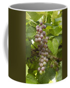 Red Grapes On The Vine Coffee Mug