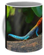 Red-headed Agama Coffee Mug
