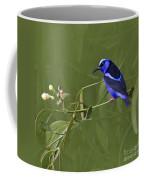 Red-legged Honeycreeper - Cyanerpes Cyaneus Coffee Mug