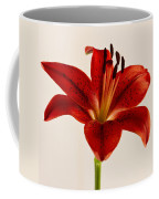 Red Lily Number Three Coffee Mug