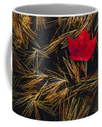Red Maple Leaf On Pine Needles In Pool Coffee Mug