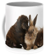 Red Merle Toy Poodle Pup, Guinea Pig Coffee Mug