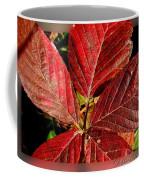 Red Quintete Coffee Mug