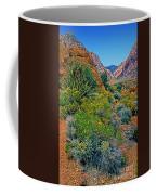 Red Rock Park Spring Flowers Coffee Mug