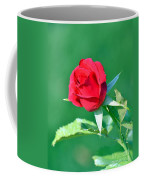 Red Rose With Star-shaped Collar Coffee Mug