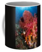 Red Sea Fan And Soft Coral In Raja Coffee Mug