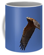 Red-shouldered Hawk - Apache Coffee Mug
